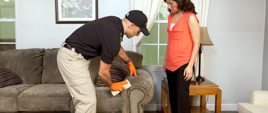 Fontana, CA carpet upholstery cleaning